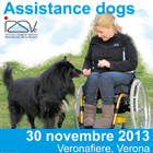 Assistance dogs: workshop. Vai al sito www.centroreferenzapet-therapy.it